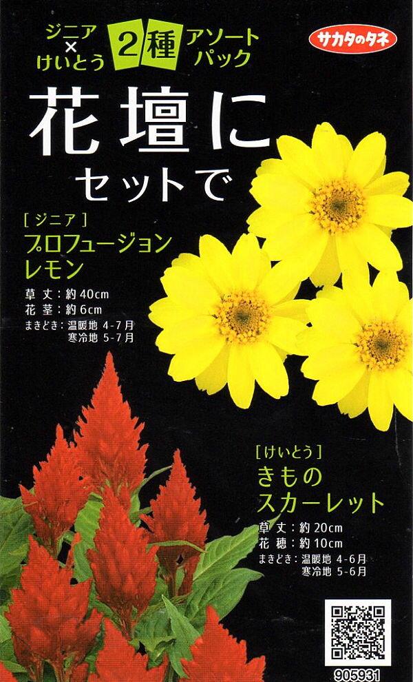 【種子】ジニア×けいとう 2種アソートパックサカタのタネ