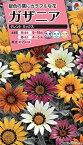 【種子】ガザニア タレントミックス タキイ種苗のタネ