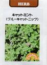 【種子】ブルーキャットニップ (キャットミント)藤田種子のタネ