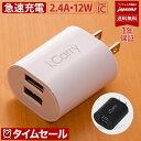 【2019発売】最大 12W 対応 i.Carry USB2