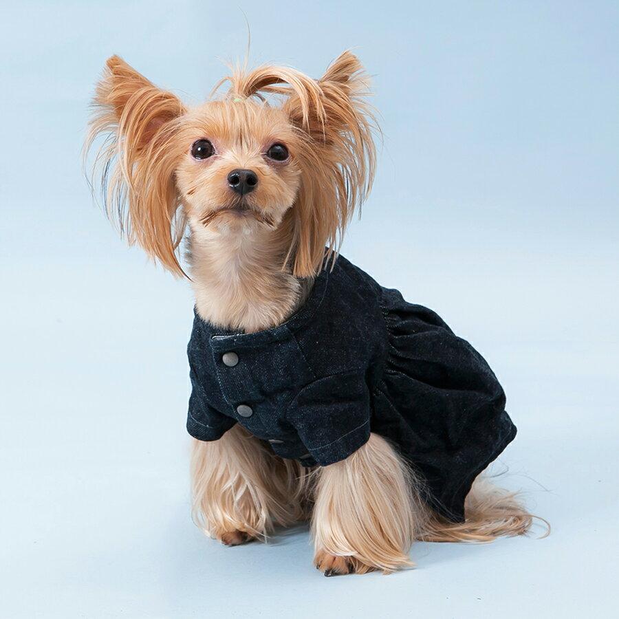 LOUISDOG/ルイドッグ ルイスドッグ BeyondDenim Jacket(犬 服 小型犬  中型犬 デニムワンピース ジャケット ドレス リバーシブル 2WAY)ドッグウエア
