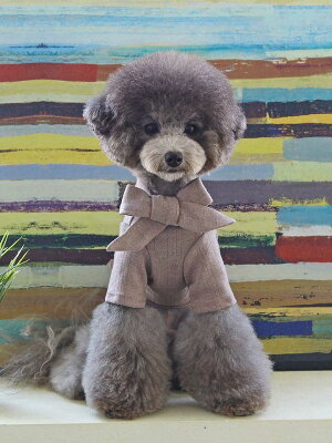 【メール便対象】ジェーンニットJaneKnit【小型犬/リボン/ニット/フィット/防寒/トップス/暖か長袖/犬服/袖付き】