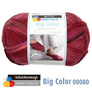 【メール便不可】Wash+Filz-it! 縮絨用毛糸 Bigcolor 00080
