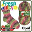Opal 靴下用毛糸 Fresh & Juicy 9360