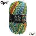 【メール便不可】Opal 靴下用毛糸 Hundertwasser 3200