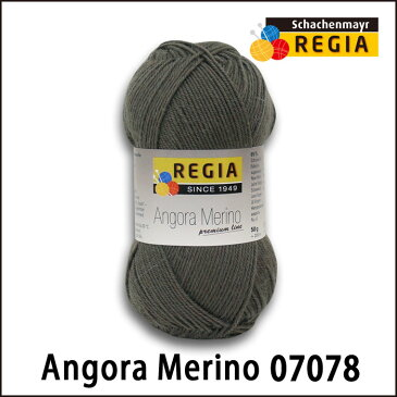 REGIA 靴下用毛糸 アンゴラメリノ プレミアムライン 07078 ソックヤーン
