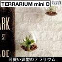 【terrarium miniD(涙型)】テラリウム ミニ 涙型 ハン...