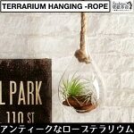 【terrariumhanging-rope】テラリウムハンキングロープS麻ロープヴィンテージインテリア壁掛け吊るすガラス北欧雑貨小物エアプランツチランジアティランジアインテリアグリーンミニ観葉観葉植物南国リビングディスプレイ
