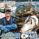 生牡蠣 殻付き 4kg 大 生食用【送料無料】宮城県産 漁師直送 格安生牡蠣お取り寄せ
