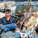 生牡蠣 殻付き 10kg 中 生食用【送料無料】宮城県産 漁師直送 格安生牡蠣お取り寄せ