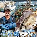 生牡蠣 殻付き 7kg 中 生食用【送料無料】宮城県産 漁師直送 格安生牡蠣お取り寄せ