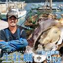 生牡蠣 殻付き 9kg 中 生食用【送料無料】宮城県産 漁師直送 格安生牡蠣お取り寄せ