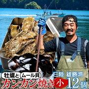 生牡蠣殻付き牡蠣生食用生ガキ大粒生かき宮城県産漁師直送通販