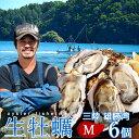 生牡蠣 殻付き 生食用 牡蠣 M 6個生ガキ 三陸宮城県産 雄勝湾(おがつ湾)カキ漁師直送 お取り寄せ 新鮮生がき
