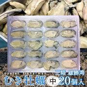 冷凍ボイル牡蠣(むき身)中20個入カキ食べたい時に食べる分だけ楽しめる宮城県産家庭用業務用真カキ
