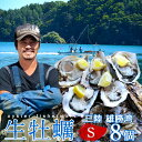 生牡蠣 殻付き 生食用 牡蠣 S 8個生ガキ 三陸宮城県産 雄勝湾(おがつ湾)カキ漁師直送 お取り寄せ 新鮮生がき