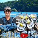 生牡蠣 殻付き 生食用 牡蠣 S 12個生ガキ 三陸宮城県産 雄勝湾(おがつ湾)カキ漁師直送 お取り寄せ 新鮮生がき