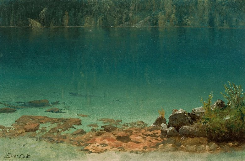 絵画 インテリア 額入り 壁掛け 油絵 アルバート・ビアスタット 湖の風景  M20サイズ M20号  727x500mm 絵画 インテリア 額入り 壁掛け 油絵:絵画販売のアートギャラリー南青山
