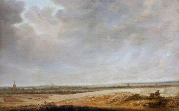 サロモン・ファン・ロイスダール とうもろこし畑の風景 M30サイズ M30号 910x606mm 条件付き送料無料 絵画 インテリア 額入り 壁掛け 油絵 サロモン・ファン・ロイスダール
