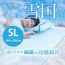 Icemax_sl