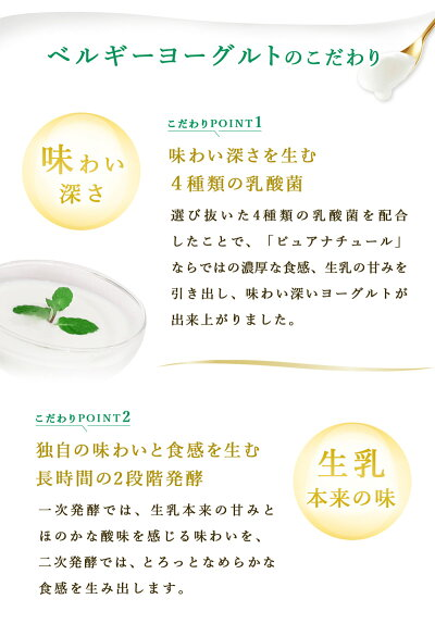 ヨーグルト6個セット2種類の味から選択プレーンブルーベリー