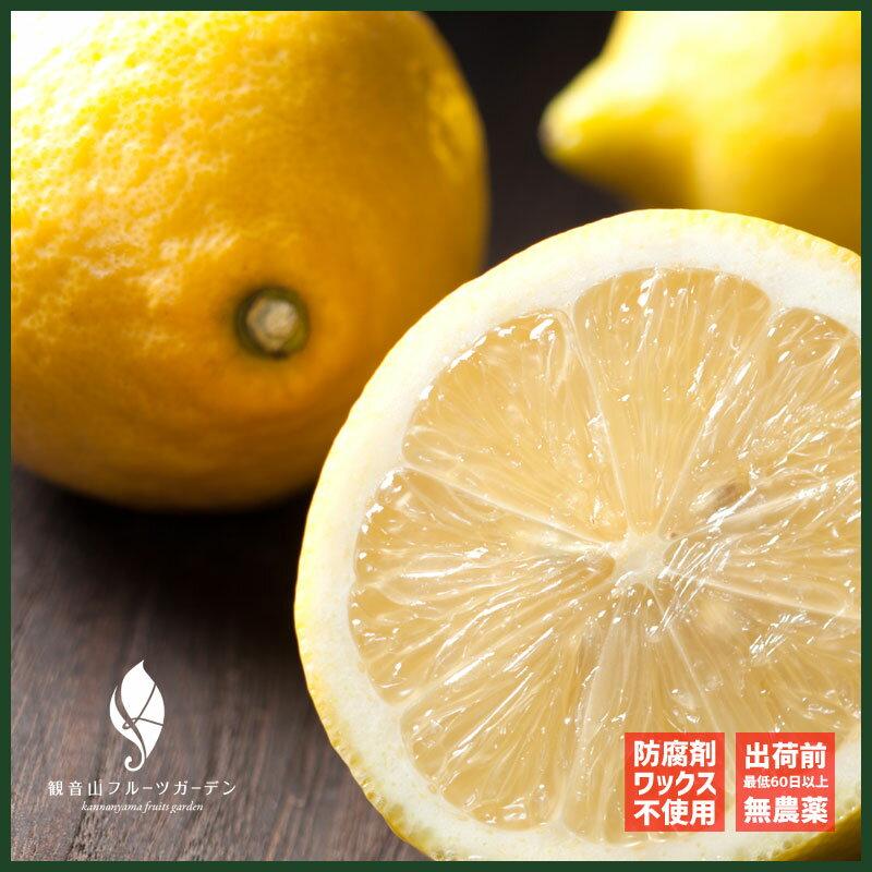 和歌山観音山レモンたおやかA級品2kg観音山フルーツガーデン天皇皇后両陛下に献上した防腐剤・ワックス不使用の国産レモン