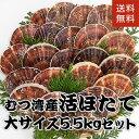 青森県むつ湾産活ほたて 大サイズ 5kg (20枚~26枚)