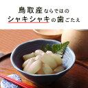 鳥取県産のらっきょう漬け 350g 5個 淡路島のお米で作った米酢仕込み 鷹の爪がピリッとアクセント 国産 ギフト プレゼント 贈り物 お中元 お歳暮 3