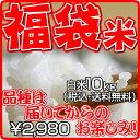 【送料無料】【新米:福袋米】 白米 10kg【平成22年・滋賀県産】