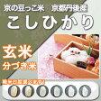 玄米 こしひかり 京都丹後産 コシヒカリ『京の豆っこ米』一等米 1kg