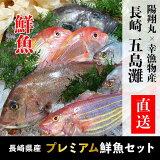 長崎県産プレミアム鮮魚セット(真鯛・イトヨリ鯛・マトウダイ・連子鯛・ひらあじ)