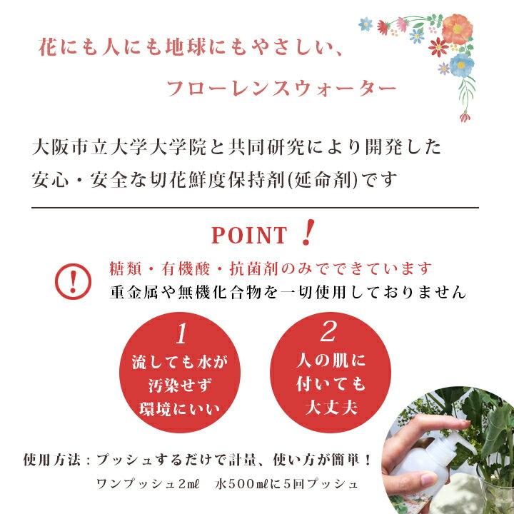 ロハスプラザ『フローレンスウォーター切花延命剤榊(さかき)用』