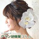 ヘッドドレス 花 ウェディング グラン 胡蝶蘭 3輪 | 和装 髪飾り...