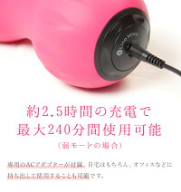 LinoMirai(リノミライ)振動ボール・ツインバージョンピンク/ブラック