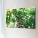 和紙 手作り アートパネル 3枚続き 「木漏れ日と白神山地の新緑のブナ...
