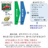 セルピュアα200ml養命研究所