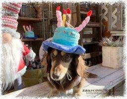 お誕生日帽子バースデイハットわんこねこちゃんHappybirthday