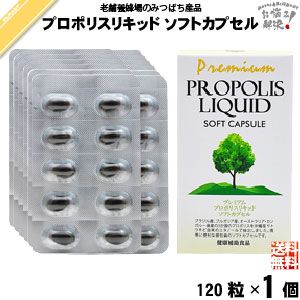 Premiumpropolikid 軟膠囊 (120 帽) 蜂膠藤井養蜂場膠囊免費送貨