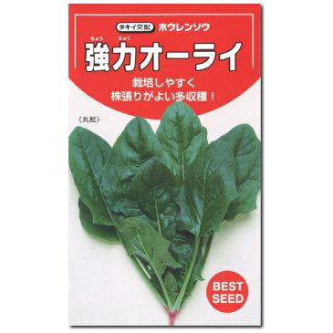 ホウレンソウ 種子 強力オーライ 1dl ほうれん草