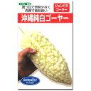 なえ屋で買える「ゴーヤ 種子 沖縄純白ゴーヤー 9粒 にがうり 【ラッキーシール対応】」の画像です。価格は486円になります。