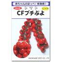 ミニトマト 種子 CFプチぷよ 100粒 プチプヨ とまと 【ラッキーシール対応】