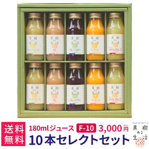果樹ある生活 180mlジュース10本ギフトF (F10)  なかひら農場TEL:0265363206            送料無料 製造直販 なかひら農場 果樹ある生活