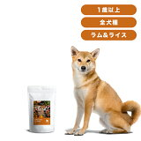 INUMESHI フィースト ラム&ライス 1歳以上 全犬種用 1kg