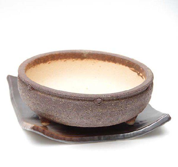 盆栽の鉢 植え替え 盆栽用 陶器鉢 信楽焼鉢 茶鉢 直径18.5cm・受皿(20cm)セット 鉢底ネット セット済み
