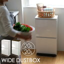 【全品クーポン】SP分別2段ワイド 40L ゴミ箱 おしゃれ ペダル ふた付き 分別 ダストボックス ワイド 2分別 縦型 キッチン リビング (ホワイト・ブラウン) アスベル p01 i31