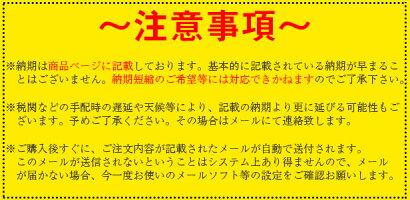 GARMINガーミンAOUAMAP1022xsMFDアクアマップ日本語モデル送料無料