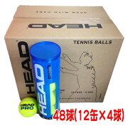 ヘッド硬式テニスボールヘッドプロ(1箱:48球/12缶×4球入)(571074)【テニスボール】【送料無料】