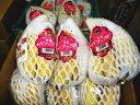 【5000円以上送料無料】バナップル1パック、4〜6本前後、450g〜500g前後