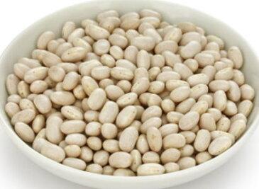 【乾物】手亡豆〈テボウマメ〉別称:白印元豆〈シロインゲンマメ〉1Kg