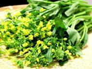 オータムポエム別称:アスパラ菜1パック、100g〜200g前後